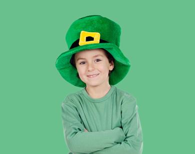 Старинные ирландские фамилии трудно спутать с какими-либо другими фамилиями. Какие понятия легли в основу ирландских фамилий и какие у них значения?