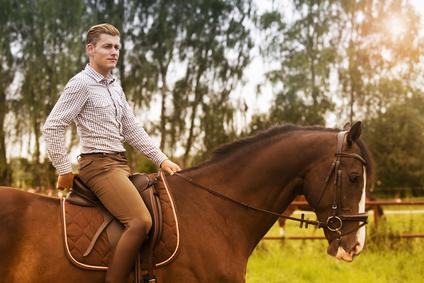 Фамилия Архипов произошла от канонического имени Архип и приняла от него значение «повелитель лошадей, начальник конницы».